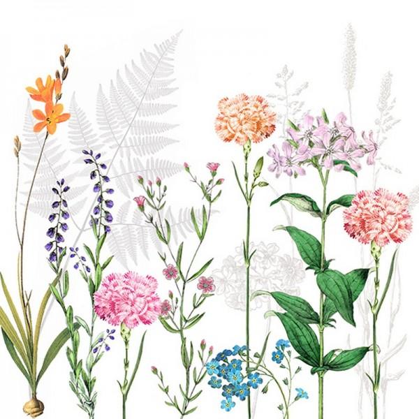 Serviette Atelier: Botanica
