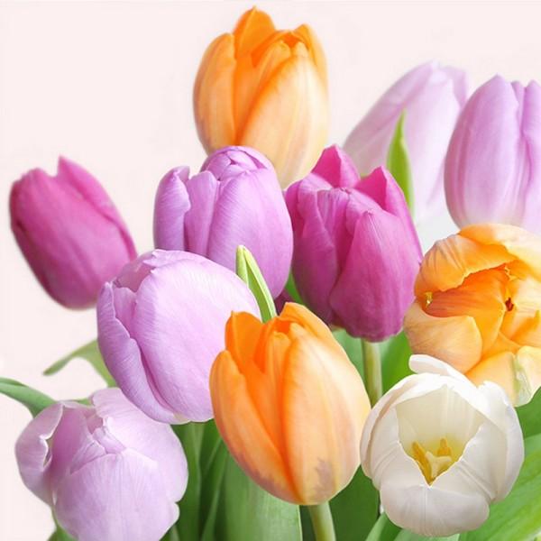 Serviette Atelier: Fresh Tulips