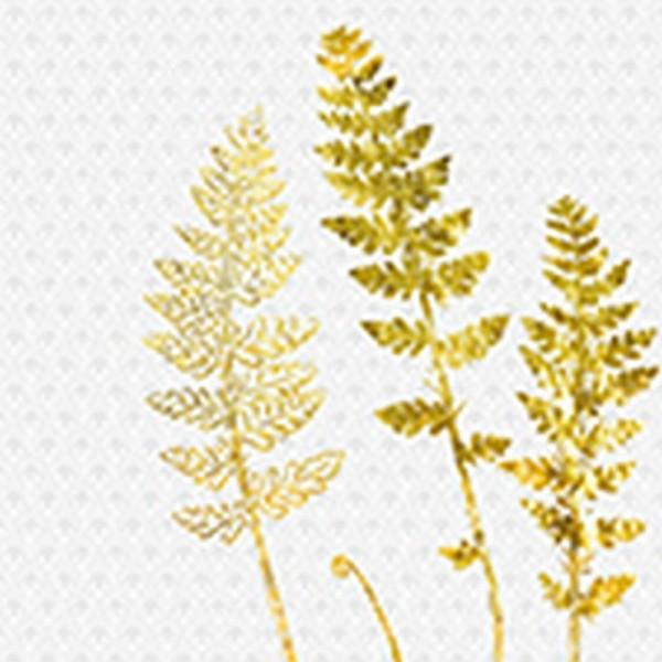 Serviette Avantgarde: Jardin Déco weiß-gold