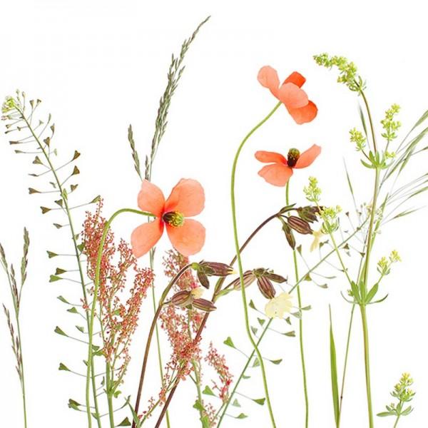 Serviette Atelier: Wiesenblumen