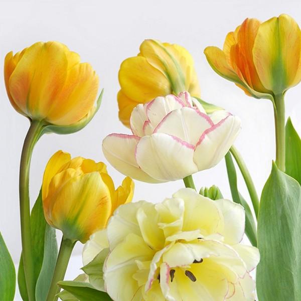 Serviette Atelier: Soft Tulips