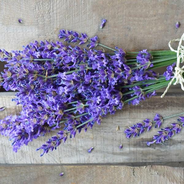 Serviette Atelier: Natural Lavender